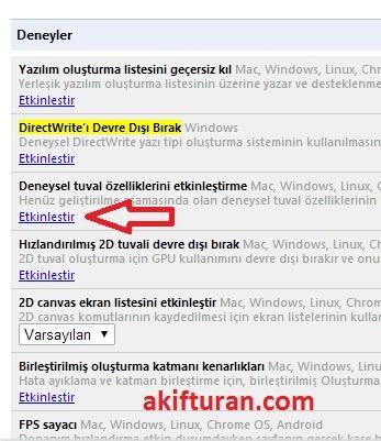Chrome Türkçe Karekter